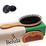 Premium Boar Bristle Hair Brush for Men Set.Styling Mens' Hair Brush with Nylon Pins. Boar Bristle Brush, 2 x Palm Brush, Wooden Comb & Travel Bag Included.