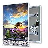 ColdFighting Geringer Rabatt 600 * 1000mm 600W Bild Fernes Infrarot -Panel Elektrische Heizung Wand Heizung
