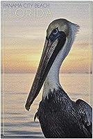 HDパナマシティービーチフロリダ-ペリカン(大人のためのプレミアム1000ピースジグソーパズル19x27)