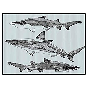 Animal Decor Play Mats Sealife Big Fierce Dangerous Fish Shark Jaws Tails Sketchy Artistic Image Carpet for Bedroom, Kids Baby Room, Nursery Rug 6×9 Feet