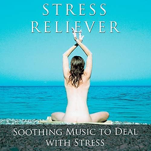Sleep Music on the Beach, Healing Therapy Music & Zen Direction