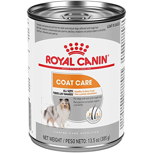 Royal Canin Coat Care Wet Dog Food, 13.5 oz. can (Pack of 12)