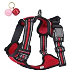 Belababy No Pull Dog Vest Harness Front Clip Handle, Reflective Easy Control Outdoor Walking Training Mini Medium Large Dog Harness, Breathable Chest Padded Mesh Adjustable Harnesses Red