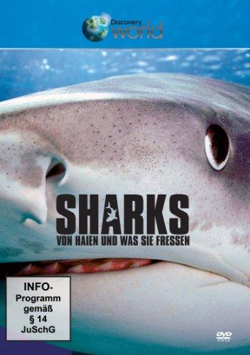 Sharks - Von Haien und was sie fressen