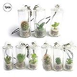 kakakooo 1pc Miniature Terrarium Plante Accessoire Trousseau avec...