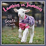 2021 Lambies in Jammies & Goats in...