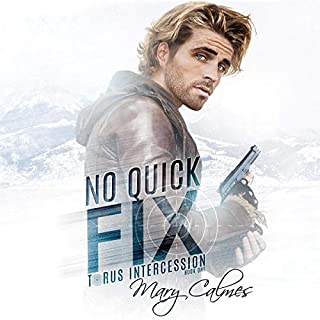 No Quick Fix audiobook cover art