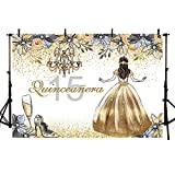 MEHOFOTO Quinceanera 15 Princess Birthday Photo Studio Booth Background Glitter Gold and Silver Floral Sweet 15 Quince Años Girl Birthday Party Banner Backdrops for Photography 7x5ft