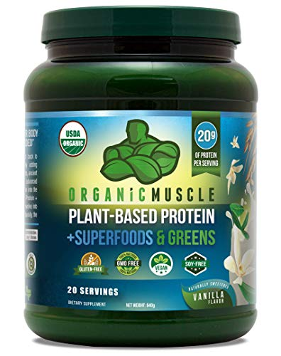 Certified Organic Superfood Protein & Greens | Plant Based Meal Replacement w/ 20g of Vegan Protein + 40 Superfoods | Immune Booster, Weight Loss Aid, Probiotic Blend | Non-GMO, Vanilla | 20 Serv