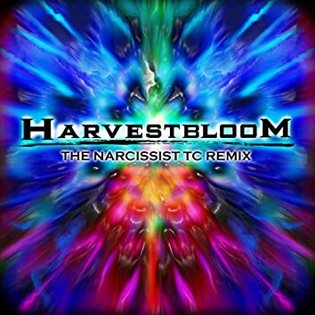 The Narcissist Tc Remix
