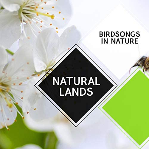 Nature Sound Series & Nature Ambience