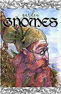Gnomes Coloring Book Sara Burrier