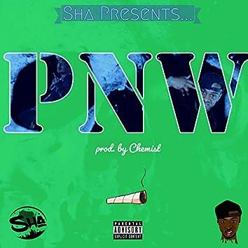 PNW (feat. Tha Catalyst)