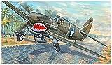 Trumpeter 3227 P-40F War Hawk Kit de modélisme en Plastique Multicolore