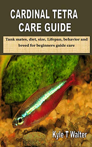 CARDINAL TETRA CARE GUIDE: Tank mates, diet, size, Lifepan, behavior and breed for beginners guide care (English Edition)