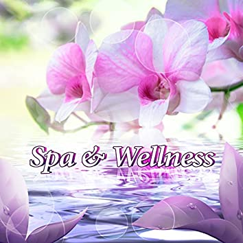 Spa & Wellness - Zen Music Playlist for Beauty and Massage Center, Luxury Spa Hotel, Cosmetic Salon and Skin Clinic Lounge (Sounds of Nature, Relaxing Ambient Background Music, Soothing Ocean Waves)