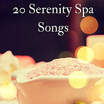 20 Serenity Spa Songs - The Best Massage Music of 2017, Calming Background Sounds of Nature