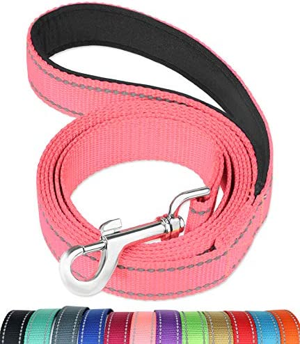 FunTags 6FT Reflective Dog Leash with Soft Padded Handle for Training Walking Lead for Large product image