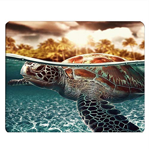 Nicokee Shark Gaming Mousepad Sea Turtle and Shark Animal Blue Mouse Pad Mouse Mat for Computer Desk Laptop Office 9.5 X 7.9 Inch Non-Slip Rubber