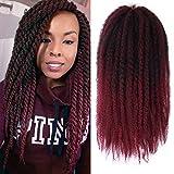 ALENTOO Afro Kinky Marley Braiding Hair 4packs Kanekalon Synthetic Twist Curly Hair 18 Inch Marley Braids Twist Crochet Braiding Hair Extensions for Women(T/Bug#)