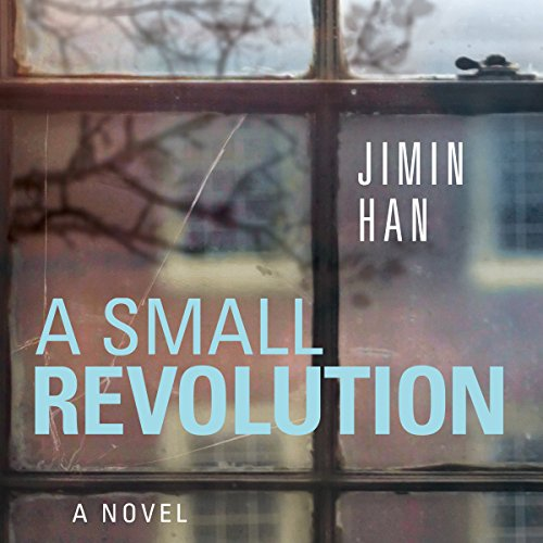 A Small Revolution audiobook cover art