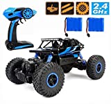 Remote Control Car,Electric RC Cars Off Road 4x4 2.4G High Speed Rock Vehicle