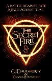 The Secret Fire (The Alchemist Chronicles, Band 1)