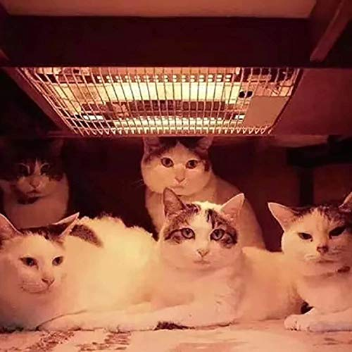 N / A nicho de calefacción, armarios de sujeción calentados Ahorro Gato Pared el Espacio de Montaje, 20-600W calefacción Regulable, Mini Horno Caliente