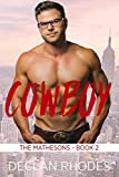 Cowboy: The Mathesons Book 2 - A Gay Family Romance Series