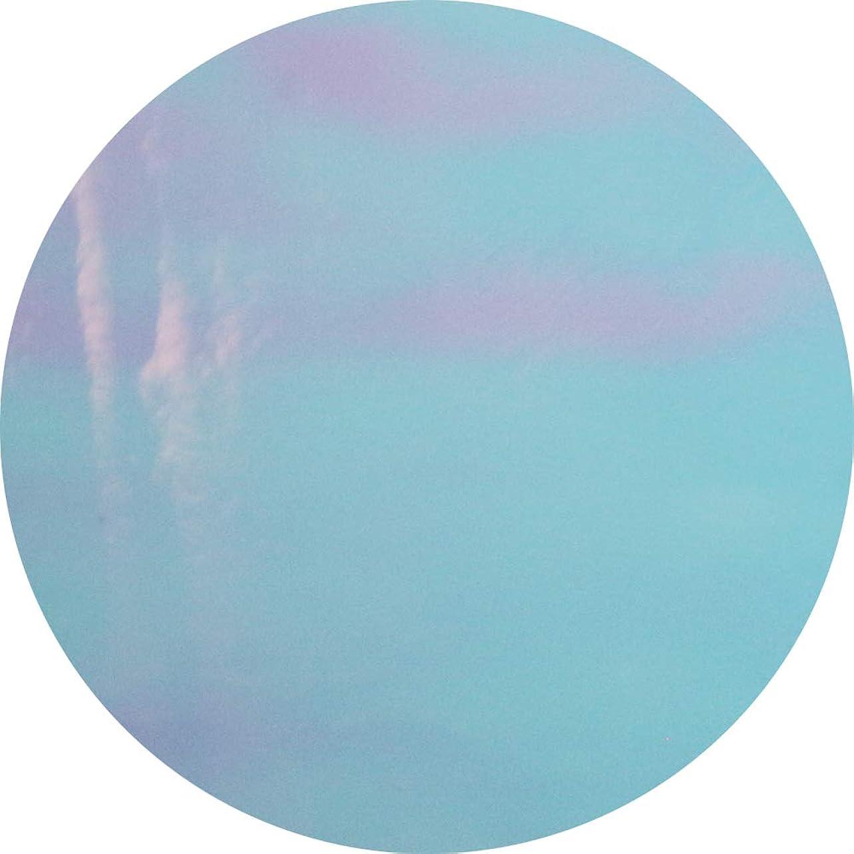 浸漬配偶者否定するMATIERE(マティエール) オーロラフィルム 偏光ブルー