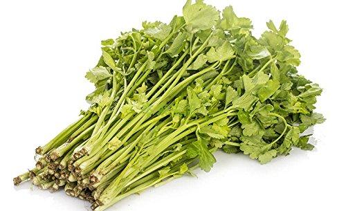 (Mix ordre minimum $5) 1 Original Pack500 + pcs Graines de légumes Graines de poireau, chinois Chive Graines, Ail ciboulette