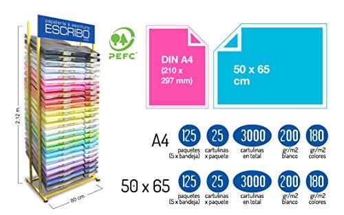 Expositor PROFESIONAL 21 COLORES para Cartulinas en FORMATOS 50x65cm y DNIA4, 24, exclusivo para tiendas.