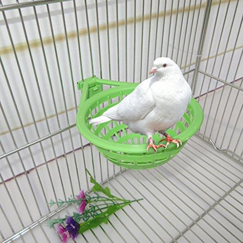 Girasool Vogelnest aus Kunststoff, hohl, zum Aufhängen, Eier, Schlüpfwerkzeug, für Finken, Papageien, Kanarienvögel, 17 x 12 x 6 cm