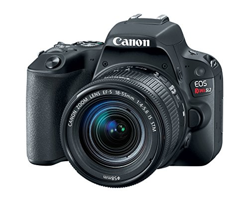 Canon EOS Rebel SL2 DSLR Camera with...