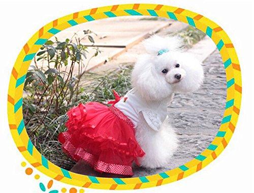 犬服 ふわふわワンピース チュールスカート コスチューム 着ぐるみ お嬢様オシャレワンピース かわいいちょう結び 犬洋服 ドッグウエア いぬ服 レッド (XXL)