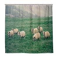PATINISA 防水シャワーカーテン、草アイスランドの自然に放牧羊と飼育テーマの写真、浴室 目隠し 間仕切り取付簡単 カーテンリング付属、おしゃれ バスカーテン 180x180CM