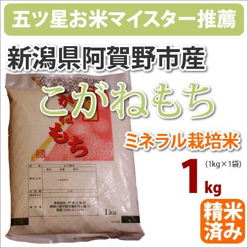 戸塚正商店 新米 新潟県阿賀野市産ミネラル栽培米 もち米「こがねもち」1kg 2年産 五つ星お米マイスター