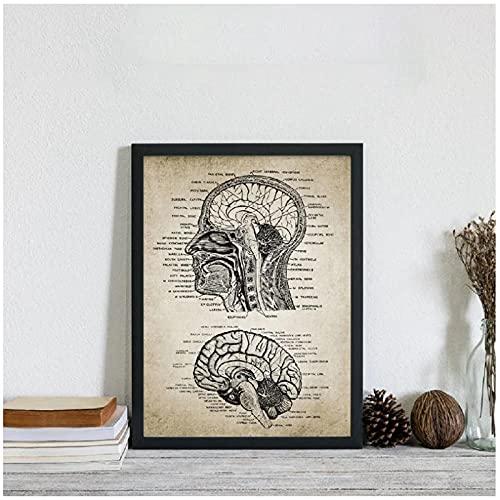 FUXUERUI Cabeza humana y cerebro anatomía neurociencia lienzo arte de pared imágenes impresas y póster para educación médica oficina clínica decoración 42x60cm sin marco