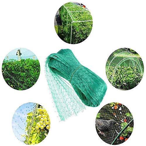 Z-Life Escalada Planta De Vid De La Red del Acoplamiento Huerta Trellis Planta De Frijol Red De Plantas Trepadoras Fence Redes Anti-Aves (Color : 4 * 10m)