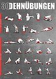 Windhund Übungsposter Stretching - großes DIN A1 Poster mit 30 Dehnübungen