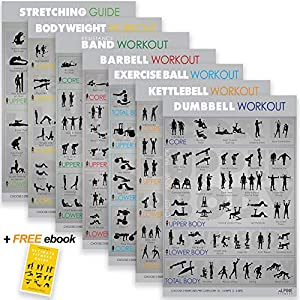 7 Exercise Workout Gym Posters – 16.5 x 28″ UV Gloss Laminated Fitness Charts. Made in USA