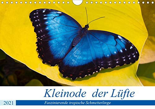 Kleinode der Lüfte - Faszinierende tropische Schmetterlinge (Wandkalender 2021 DIN A4 quer)