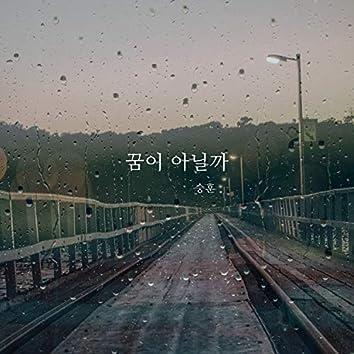 꿈이 아닐까 Rainy Dawn