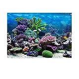 HXHON Adhesivo para fondo de acuario 3D con diseño de arrecife de coral para decoración de peceras subacuáticas (61 x 30 cm)
