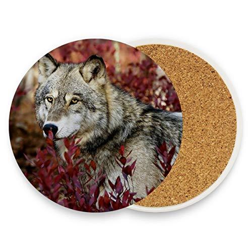 Grauer Wolf im schönen roten Laub 103912877 Cork Cup Untersetzer Cup Untersetzer Set mit Keramikstein und Korkboden für Arten von Bechern und Bechern
