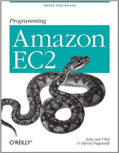 Programming Amazon EC2: Survive your Success (English Edition)