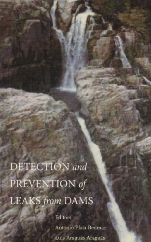 Detection and the Prevention of Leaks from Dams