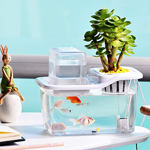 Redcolourful Desktop Mini Aquaponics Aquarium mit automatischem Zirkulationssystem für Home Office Decor