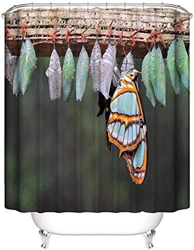 Schmetterlingseier Blaugrauer privater Duschvorhang, dekorativer Duschvorhang, wasserdicht & leicht zu entfernen 180X180Cm