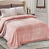 Whale Flotilla Flannel Fleece Queen Size(90x104 Inch) Lightweight Bed Blanket, Soft Velvet Bedspread Plush Fluffy Coverlet Chevron Design Decorative Blanket for All Seasons, Pink